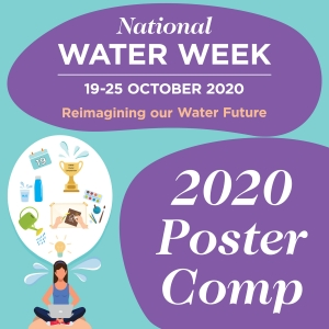 Click here to learn about the Poster competition